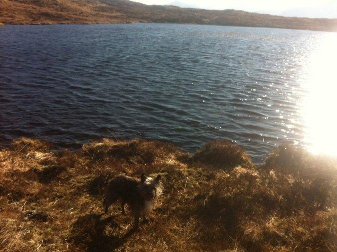 1 Beinn Sgritheall Munro Bagpiper